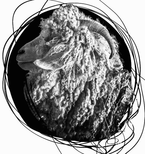 logo créations du bochaine2